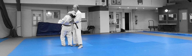 La voie de l'harmonie par la pratique martiale