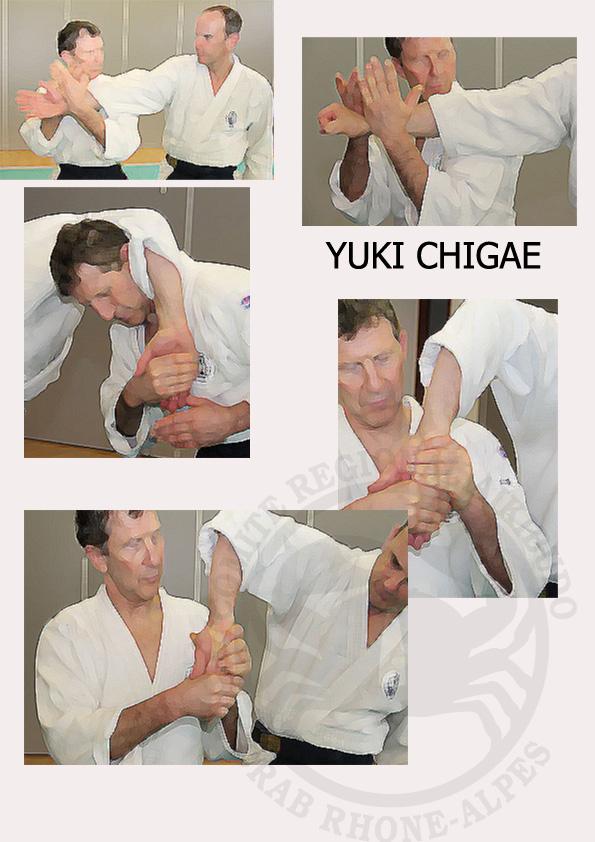 Yuki chigae